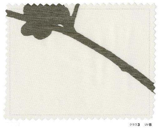 スミノエ U-4041